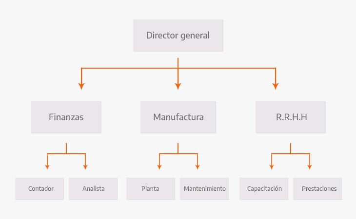 Ejemplo de una estructura organizacional