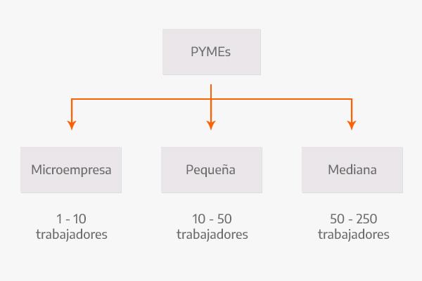Clasificación y tipos de PYMEs